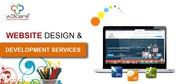Custom Website Redesign and Development Services